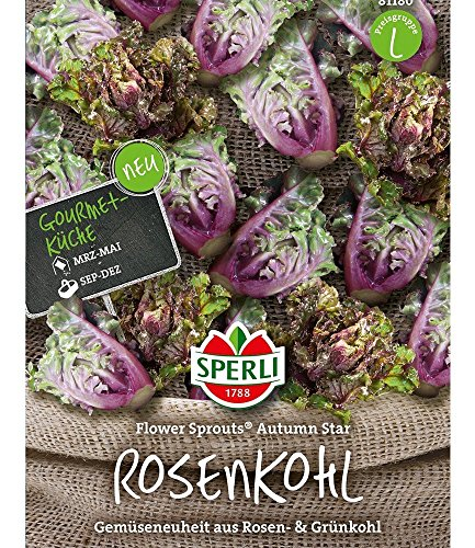 Flower-Sprout Rosenkohl,1 Portion von Sperli