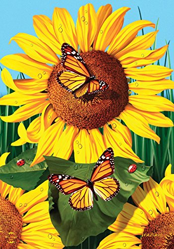 Briarwood Lane Sunflower Field Summer Garden Flagge Schmetterlinge Floral 31,8 x 45,7 cm von Briarwood Lane