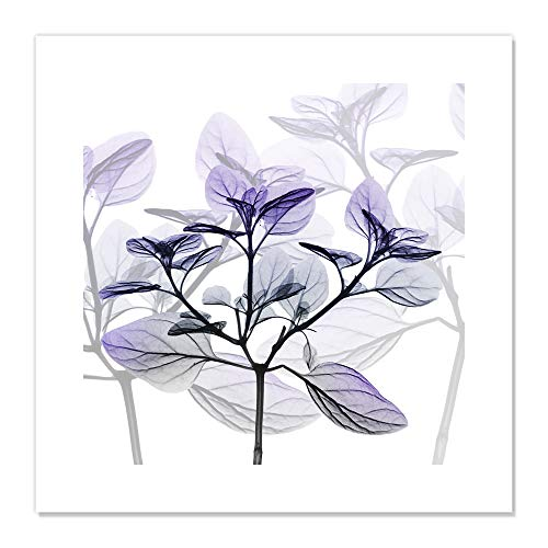 "Casa Fine Arts Delightful Pleasures II Modern Purple X-Ray Floral Botanical Wall Art Archival Print, 20"" x 20"", von Casa Fine Arts"
