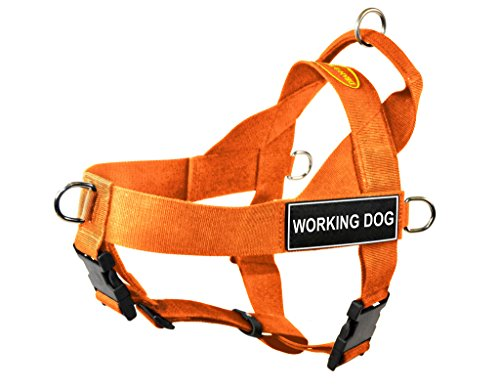 Dean & Tyler DT Universal No Pull Dog Harness with Working Dog Patches, Orange, X-Small von Dean & Tyler
