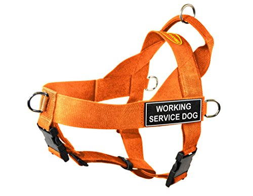 Dean & Tyler DT Universal No Pull Dog Harness with Working Service Dog Patches, Orange, Small von Dean & Tyler