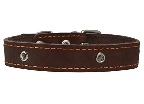 Genuine Leather Studded Dog Collar, Brown, 1 Wide. Fits 13-17.5 Neck Size by Dogs My Love von Dogs My Love