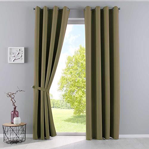 2 x Blickdichter Vorhang Reliefprägung Apfelgrün Barock Ösen HxB 245x135 cm