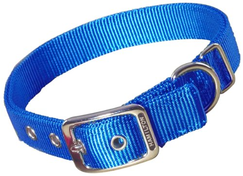 Hamilton Double Thick Nylon Deluxe Dog Collar, 1-Inch by 18-Inch, Blue von Hamilton