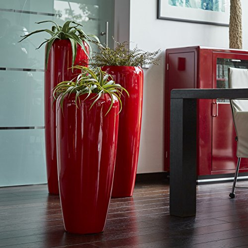 rot blumenk sten bert pfe und weitere pflanzen. Black Bedroom Furniture Sets. Home Design Ideas