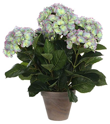 MICA Decorations 947274 Blumen, Hydrangea, violett von MICA Decorations