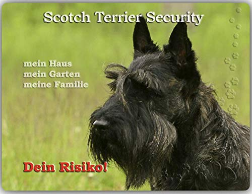 Merchandise for Fans Warnschild - Schild aus Aluminium - 20x30cm Motiv: Scotch/Scottish Terrier Security (01) von Merchandise for Fans