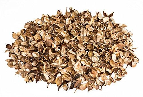 NaDeco® Cotton Pods rot 250gBaumwoll KnospenDeko Blütengetrocknete Natu