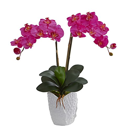 Nearly Natural Double Phalaenopsis Orchid Artificial Arrangement in White Ceramic Vase, Dark Pink von Nearly Natural
