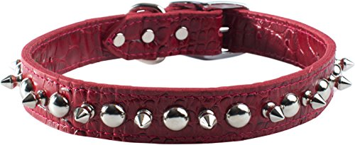"OmniPet Faux Crocodile Signature Leather Pet Collar with Spike and Stud Ornaments, Red, 1-1/2 by 24"" von OmniPet"