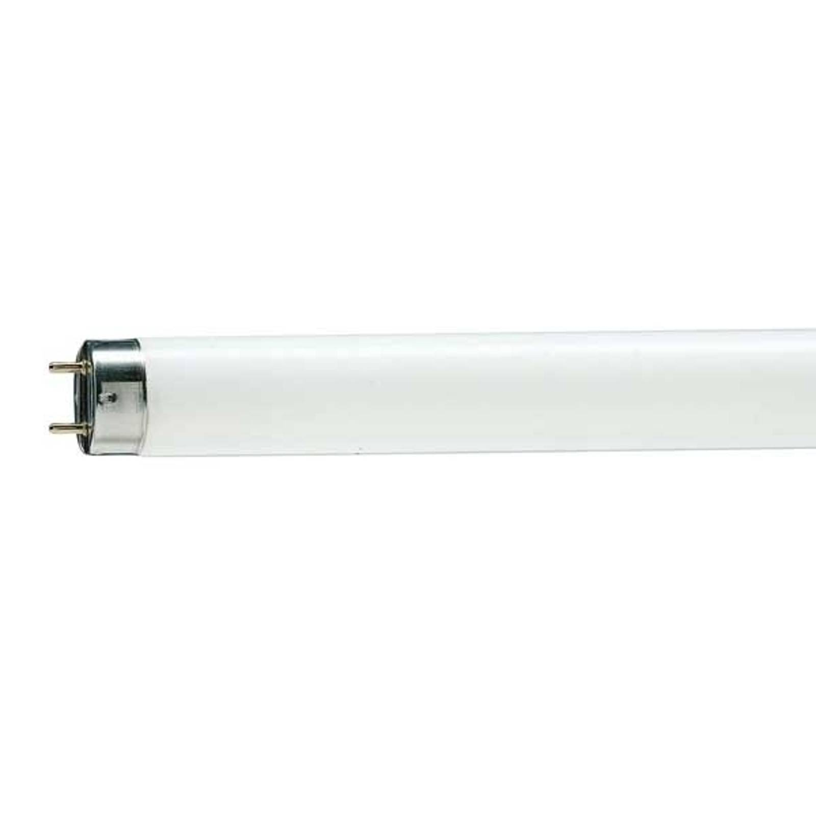 G13 T8 58W 965 Master TL-D Deluxe Leuchtstofflampe von Philips