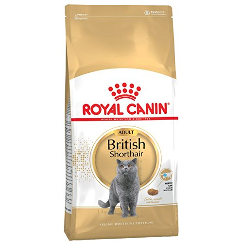 ROYAL CANIN British Shorthair | 2X 4kg Sparpackung von ROYAL CANIN