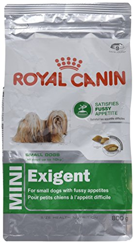 Royal Canin Size Mini Exigent, 1er Pack (1 x 800 g) von ROYAL CANIN