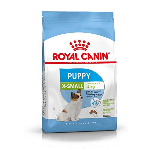 Royal Canin Hundefutter X-Small Puppy, 3 kg, 1er Pack (1 x 3 kg) von ROYAL CANIN