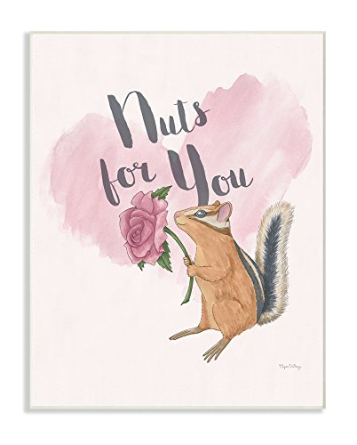 "Stupell Industries I'm Nuts For You Wandschild mit englischer Aufschrift ""I'm Nuts For You"", Pink von The Stupell Home Decor Collection"